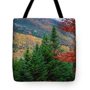 maine 57 Baxter State Park Loop Road Fall Foliage Tote Bag