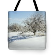 Maine Apple Trees Covered In Ice And Snow Tote Bag