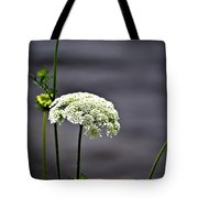 Maine Flora Tote Bag
