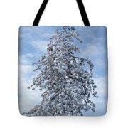 Maine Winter 2013  Tote Bag
