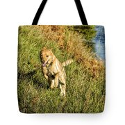 Maisie - Boundless Energy Tote Bag