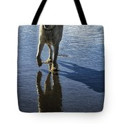 Maisie At The Beach Tote Bag