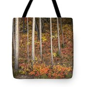 Majestic Autumn In The Grand Tetons Tote Bag by Sandra Bronstein