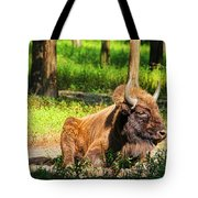 Majestic Bison Tote Bag