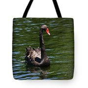 Majestic Black Swan Tote Bag
