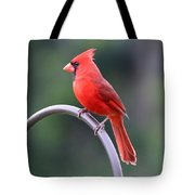 Majestic Cardinal Tote Bag