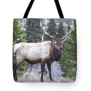 Majestic Elk Tote Bag