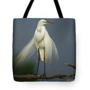 Majestic Great Egret Tote Bag