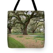 Majestic Live Oaks In Spring Tote Bag