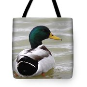 Majestic Mallard - Duck Tote Bag