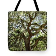 Majestic Oak 3 Tote Bag