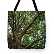 Majestic Oak Tote Bag