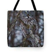 Majestic Owl Tote Bag
