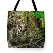 Majestic Spirit Collection 1 Tote Bag