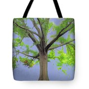Majestic Tree With Birds Nest Tote Bag