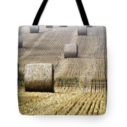 Make Hay While The Sun Shines  Tote Bag