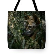 Making Rounds Tote Bag