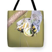 Malachite Butterfly Emerging 4 Of 6 Tote Bag
