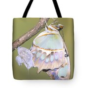 Malachite Butterfly Emerging 6 Of 6 Tote Bag