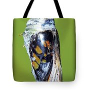 Malachite Butterfly Metamorphosis Tote Bag