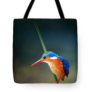 Malachite Kingfisher Tote Bag