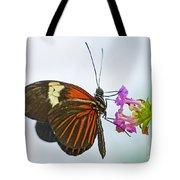 Malay Lacewing Tote Bag