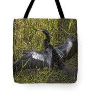 Male Adult Anhinga Tote Bag