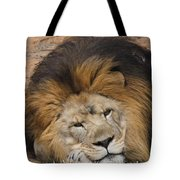 Male African Lion Tote Bag