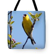 Male American Goldfinch Gathering Feathers For The Nest Tote Bag