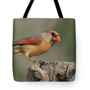 Male And Female Cardinal Tote Bag