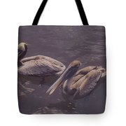 Male And Female Pelicans Tote Bag
