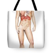 Male Body Standing, With Full Tote Bag