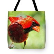 Male Cardinal Close Up - Digital Paint Tote Bag