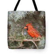 Male Cardinal In Spruce Tree Tote Bag