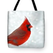 Male Cardinal In The Snow - Digital Paint Tote Bag