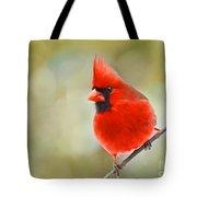 Male Cardinal On Angled Twig - Digital Paint Tote Bag