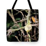 Male European Robin Tote Bag
