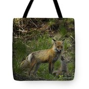 Male Fox And Pup   #3554 Tote Bag