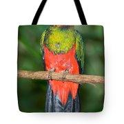 Male Golden-headed Quetzal Tote Bag