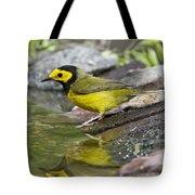 Male Hooded Warbler Tote Bag