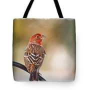 Male House Finch - Digital Paint And Frame Tote Bag