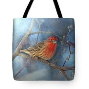Male House Finch With Blue Texture Tote Bag