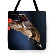 Male Hummingbird Anna's Coming In Too Low Tote Bag