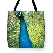 Male Indian Peacock Tote Bag