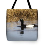 Male Lesser Scaup Tote Bag