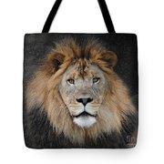 Male Lion Portrait Tote Bag