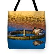 Male Mallard Duck Tote Bag by Carolyn Marshall