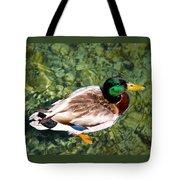 Male Mallard Swimming Tote Bag