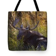 Male Moose   #3865 Tote Bag