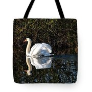 Male Mute Swan Tote Bag